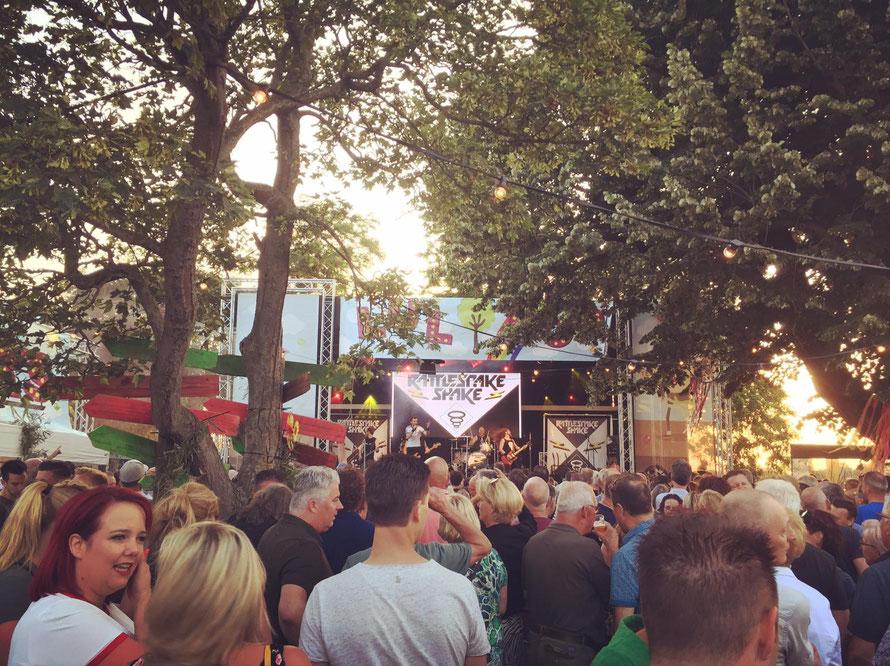 festival lulboompop in de gemeente oss met publiek buiten rondom de lulboom